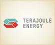 """TeraJoule Energy versteht sich als Spezialist für den Wandel vom herkömmlichen hierarchischen Energiesystem zum künftigen """"Grünen Internet der Energie"""" (Smart Grid). TeraJoule Energy bedient dabei die gesamte energiewirtschaftliche Wertschöpfungskette von der Erzeugung über das Lastmanagement und den Handel bis hin zur Verbrauchsoptimierung."""